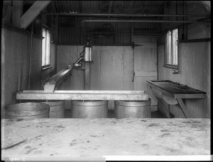 Milk transfer system in a shed at a dairy farm