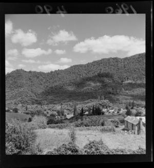 Pipiriki, Whanganui River, Ruapehu District