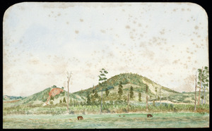 Artist unknown :From Te Aroha, looking north [ca 1902]