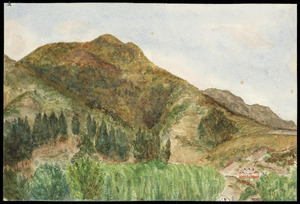 Artist unknown :Te Aroha 1901. Most of the town is not in view. However the hotel with its hot spa facilities is shown in the right hand corner [1901]