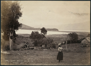 Ngongo, Lake Rotoaira - Photograph taken by the Burton Brothers