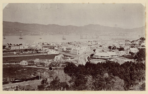 View of Thorndon and Wellington Harbour, New Zealand
