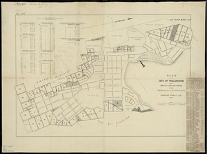 Plan of the city of Wellington, showing town belt leases & reserves [cartographic material] / prepared for the City Corporation by Charles O'Neill.