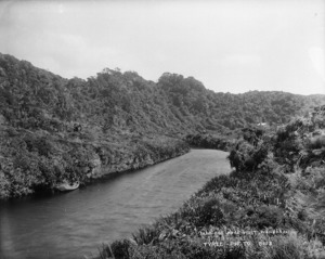Sand Hill Creek, West Wanganui Inlet, Tasman district