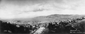View from Kelburn, looking across Wellington City