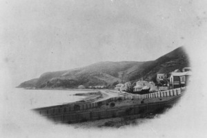 View of houses at Oriental Bay, Wellington