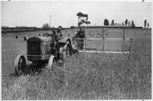 Tractor with reaper binder, harvesting wheat on a Canterbury farm - Photograph taken by Green and Hahn
