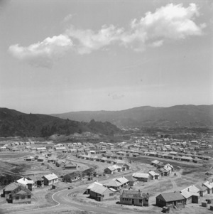 State housing, Naenae, Lower Hutt