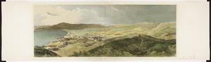 Brees, Samuel Charles, 1810-1865 :Te Aro Flat from near Captain Sharpe's residence. [London, 1847]