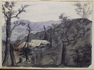Templer, Cherie, 1856-1915. Attributed works :[Camp in the Waitakere Ranges. 1880s?]