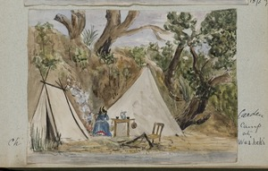 Templer, Cherie, 1856-1915. Attributed works :Carden camp at Waiheki. [1873]