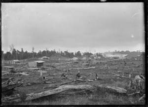 View of timber milling township of Mamaku, looking towards the Mountain Rimu Timber Company mill.