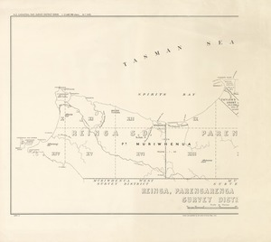 Reinga, Parengarenga & North Cape Survey Districts [electronic resource] / drawn and published by the Lands & Survey Dept., N.Z.
