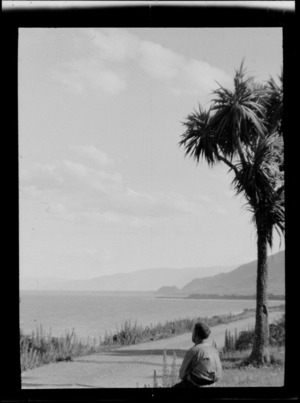Cabbage tree and unidentified man, beside a road, looking out to sea, Makarora, Otago District