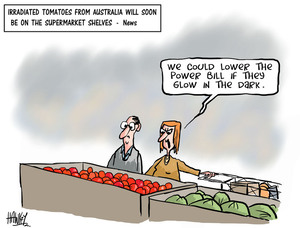 "Hawkey, Allan Charles, 1941- :""We could lower the power bill if they glow in the dark."" 25 June 2013"
