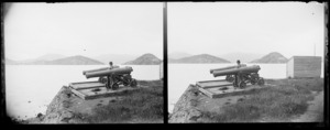 William Williams with two military cannons, location unidentified