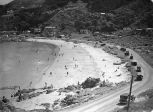 Overlooking the beach at Scorching Bay, Wellington