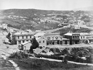 Meluish, William, 1823?-1888 (Photographer) : Dunedin