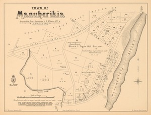 Town of Manuherikia [electronic resource] / surveyed by dist. surveyors, A.D. Wilson, 1872, E.H. Wilmot 1902.