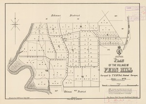 Plan of the village of Fern Hill [electronic resource] surveyed by T.B. McNeil, October 1879 ; drawn by J.M. Fraser, Jan. 1880.