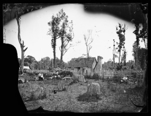 F Webb's dwelling and family, in the Rangitikei