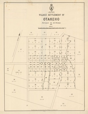 Village settlement of Otakeho [electronic resource] / surveyed by E.S. Brookes.