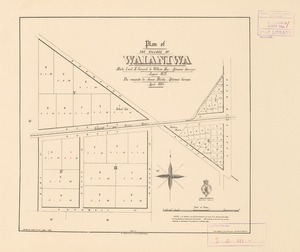 Plan of the village of Waianiwa [electronic resource] / blocks I and II, surveyed by William Hay; the remainder by James Blake; drawn by James Fraser.