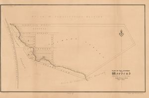 Plan of the township of Woodend, Province of Southland, N.Z. [electronic resource] / R.P. MacGowan, delt.