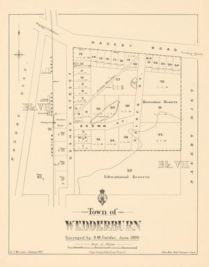 Town of Wedderburn [electronic resource] / surveyed by D.M. Calder, June 1900 : A.J. Morrison, January 1901 ; John Hay Chief surveyor otago.