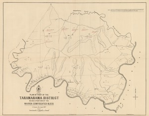 Plan of part of the Taramarama district being part of the Wairoa confiscated block [electronic resource] / L. Cussen, Surveyor 1877.