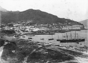 Photograph of Lyttelton and its port
