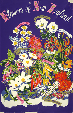 Artist unknown: Flowers of New Zealand. [Purple background. 1930s?]
