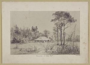 [Smith, William Mein] 1799-1869 :Tauanui. J. Tully Esq. Jan. 1849