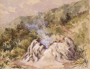 Barraud, Charles Decimus, 1822-1897 :The Crow's Nest Geyser, on the Waikato [18--].