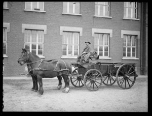 Second prize team in the Divisional horse show, Leverkusen, Germany, 1919