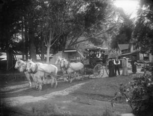 Horse drawn coach alongside the Athenree Post Office and Athenree homestead, Tauranga district