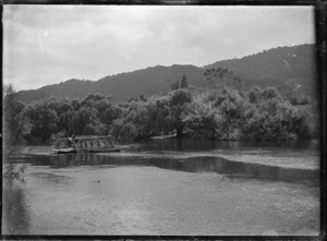 A punt, transporting a horse, being winched across the Waipa River, in 1917.