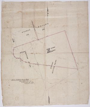 Wyles & Buck :[Survey of part of sections 231 and 232, Stokes Valley, Wellington] [ms map]. [Signed] Wyles & Buck, licensed surveyors, Wellington, 1875.