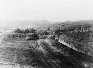 Road between Hangatiki and Otorohanga