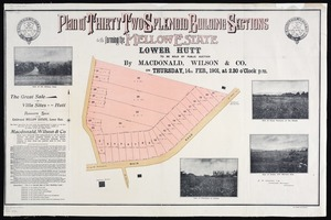 Plan of thirty two splendid building sections forming the Mellow estate, Lower Hutt  / E. W. Seaton, auth. surv.