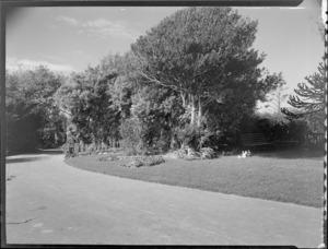 Drive and garden with ornaments, Homewood, Karori, Wellington