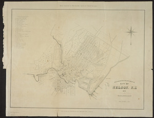 Wise's New Zealand directory plan of the city of Nelson, N.Z. [cartographic material] / drawn on stone by Thos. George.