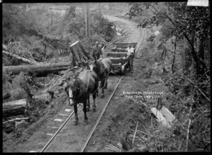 Men with an empty wagon on a bush railway track