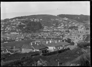 Part three of a three part panorama of Dunedin
