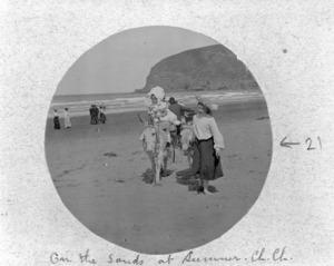 Children with donkeys on Sumner Beach, Christchurch