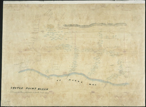 [Creator unknown] :Castle Point Block, taken from plan attached to Castle Point Deed [ms map]. [ca.1853]