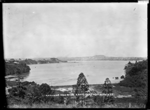 Auckland Harbour from Northcote