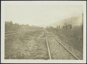 Bent railway lines after the 1929 Murchison earthquake