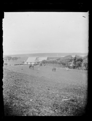 Scene with houses and trees, Chatham Islands