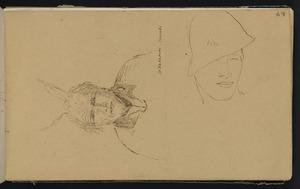 Mantell, Walter Baldock Durrant, 1820-1895 :Te Wakaeini. Pita. [1848]